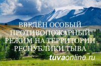 В Туве с 4 по 21 июня введен особый противопожарный режим, запрещен въезд на территорию 10 лесничеств