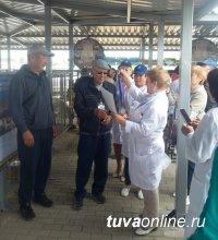 Козел-производитель № 4765, ремонтный козел и козоматка из Тувы стали победителями Сибирско-Дальневосточной выставки