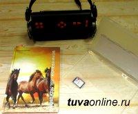 """Выпущена аудиокнига """"Лошадь в традиционной практике тувинцев-кочевников"""" (автор - Вячеслав Даржа)"""