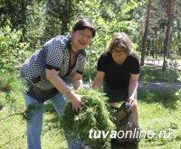 Кызыл: Шефство ТувГУ над Молодежным парком продолжается. Состоялась очередная экологическая акция