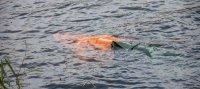 В Туве устанавливается личность погибшей на воде женщины