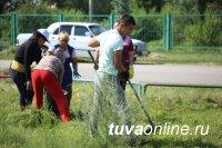 В Кызыле Совет микрорайона «Правобережный» подал пример борьбы с разросшимся бурьяном