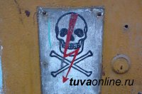 В Туве 9-летний мальчик залез в трансформаторную будку