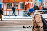 В Алтайском крае средний возраст населения составил 40, 9 года, в Туве - 29,8 года