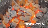 В Кызыле начнется производство брикетированного угля