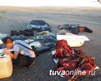 В Туве избежал суда браконьер из Иркутска, добровольно возместивший ущерб