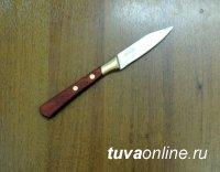 В Туве пьяная «я же мать» напала на сына с ножом