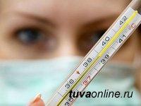 В Туве обнаружены первые два случая подозрения на заражение  гриппом В