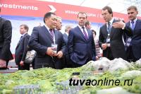 Железную дорогу в Туву до августа 2021 года спроектирует «Стройпроект»