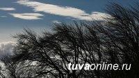 В Туве 11 марта обещают усиление ветра до 17 метров в секунду