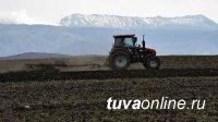 Глава Тувы поставил задачу начать весенне-полевые работы в установленные сроки