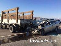 В Туве из-за скота на дороге водитель въехал в грузовик и разбился насмерть