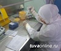 Лабораторной службе Тувы для борьбы с COVID-19 выделят до 12 миллионов рублей