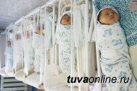 Чечня и Тува стали лидерами по рождаемости в России