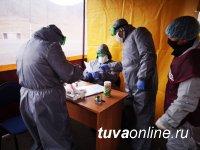 В Туве на 22 мая 511 человек больны COVID-19