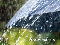 В Туве девятого июля ожидают сильные дожди и ветер