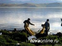 День Рыбака. Данные по Красноярскому краю, Хакасии и Туве