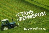 В Туве начинающим фермерам выделят гранты