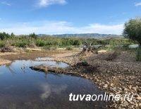 В Туве найдены останки двух скелетированных трупов