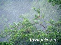 В Туве 15 июля будет штормить