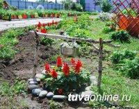 """Прием заявок на городской конкурс """"Цветущий Кызыл"""" завершается 1 августа 2020 года"""
