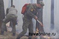 Тува получит почти 90 млн рублей на борьбу с лесными пожарами