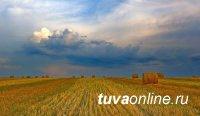 В Туве пятого августа переменные дожди с грозами
