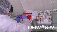 В Туве на пятое августа выявили минимум больных с COVID-19