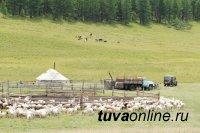 В Туве открывается туристическая чабанская стоянка «Дус-Даг»