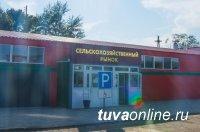 В столице Тувы открыт пункт сбора дикоросов