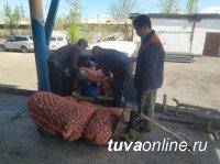 В Туве за шесть лет социальный картофель получили 16134 семьи