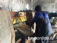 В шести районах Тувы появятся мини-цеха по выделке шкур