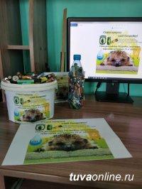 Кызыл-2020: Сдай батарейку - спаси природу!