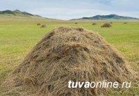 В Туве завершают кормозаготовительную кампанию