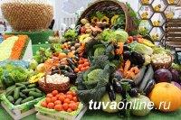 Сегодня в столице Тувы проведут ярмарку «Золотая осень» и отметят праздник Борща