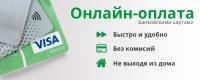 Жители Тувы, Алтая, Хакасии стали чаще совершать онлайн-операции по картам