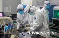 В Туве на 12 октября выявили 47 инфицированных COVID-19