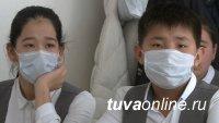 Учителя вышли на первое место по заболеваемости COVID-19 в Туве