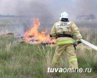 В Туве за неделею пожарные 17 раз тушили палы сухой травы