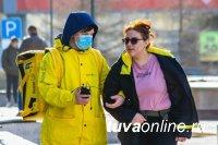 В Туве самозанятых обложат налогом с помощью «Яндекса»