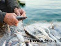 В Туве за 9 мес. произвели 166,9 тонны рыбной продукции