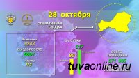 Тува. На 28 октября за сутки зарегистрировано 80 новых случаев заболевания COVID-19