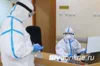 В Туве на 8 ноября за сутки COVID-19 заболели еще 96 человек