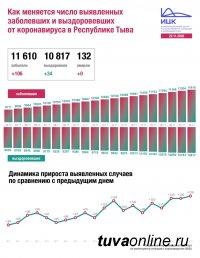 В России за прошедшие сутки зафиксирован 24 581 новый случай коронавируса, в Туве - 106 случаев