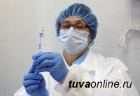 В Туве на 8 декабря от COVID-19 выздоровели 150 человек, заболели – 95