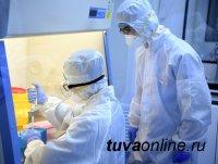 В Туве на 14 декабря новые случаи COVID-19 выявили лишь в 5 из 19 муниципалитетов