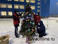 В Кызыле перед ковид-госпиталем активисты ОНФ установили новогоднюю елку