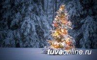 В Туве в январе 2021 года температура воздуха «прогреется» на 1ºС выше среднего