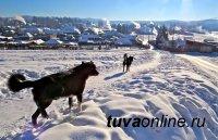 В Туве 23 декабря температура воздуха днем составит - 16, - 21 градуса мороза