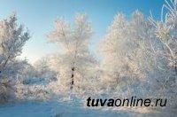 В Туве мороз крепчает